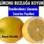 Buzluğa limon koymanın faydaları